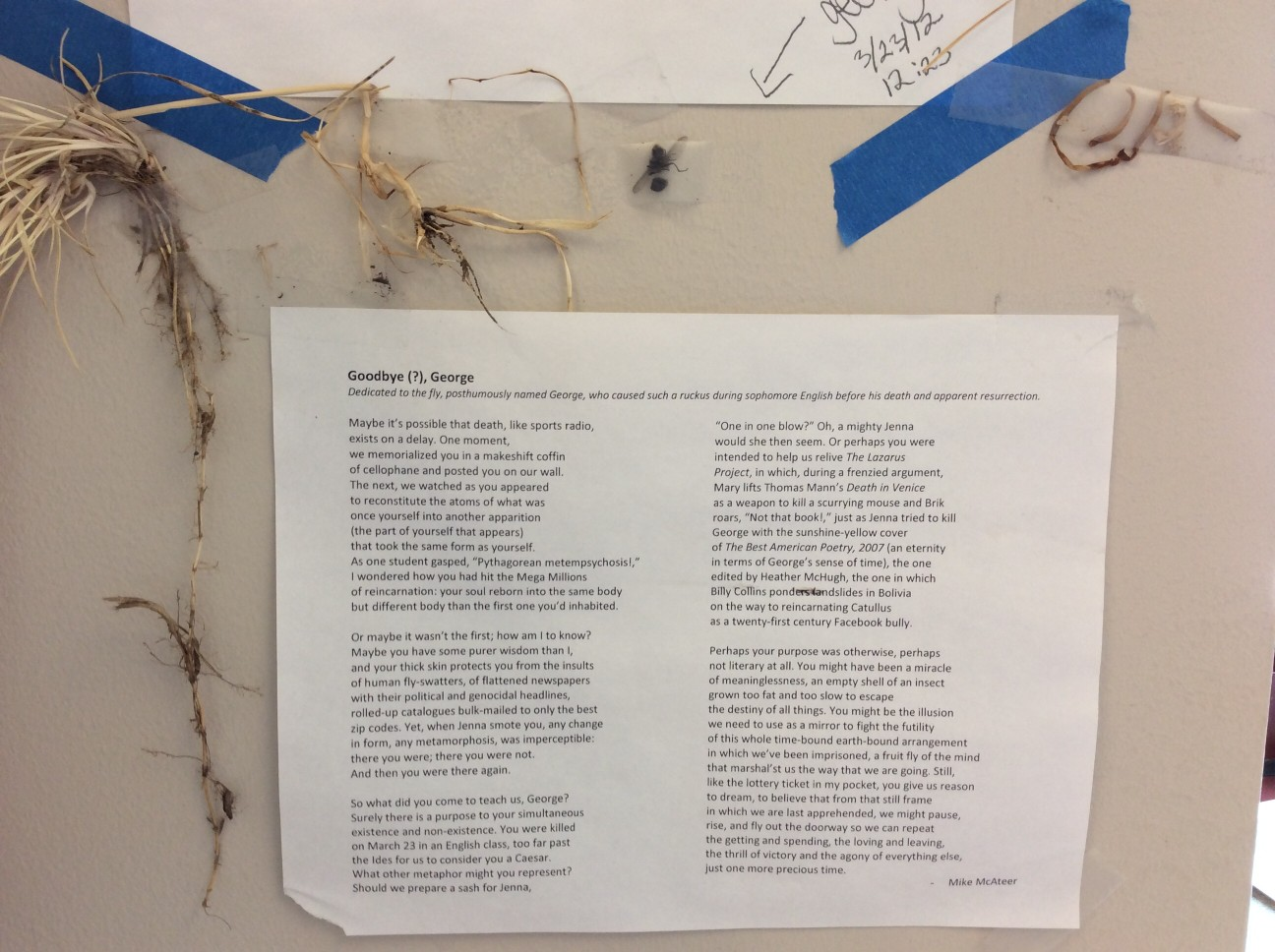 It may be safe to say that our classroom is the only one in America - nay, the only one in the world - that has had a dead fly encased in its cellophane sarcophagus for two and a half years. The poem about George's nearly instant reincarnation is a daily reminder of the mysterious ways of the universe.
